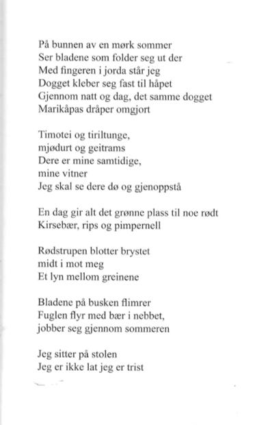 På bunnen. Et dikt publisert i Utflukt #4 2009